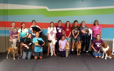Youths learn positive training through 4-H